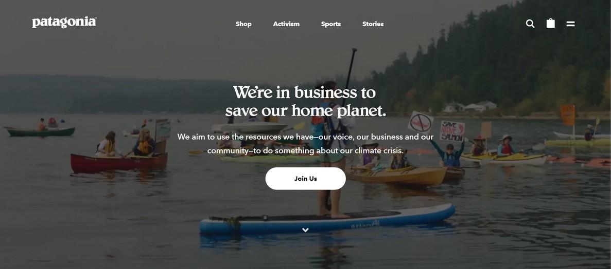 patagonia_website_screenshot